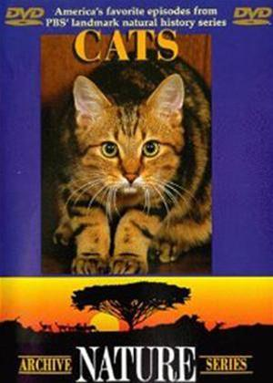 Rent Cats: Archive Nature Series Online DVD Rental