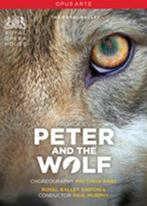 Rent Peter and the Wolf: The Royal Ballet Online DVD Rental