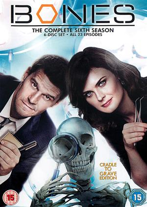 Rent Bones: Series 6 Online DVD Rental