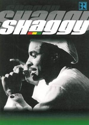Rent Shaggy: Live at Chiemsee Festival Online DVD Rental