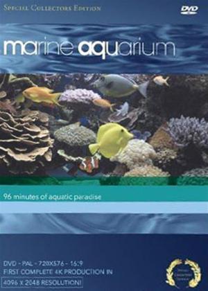 Rent Marine Aquarium Online DVD Rental