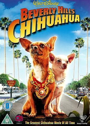 Beverly Hills Chihuahua Online DVD Rental