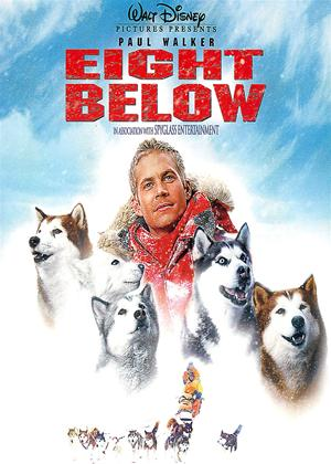 Eight Below Online DVD Rental