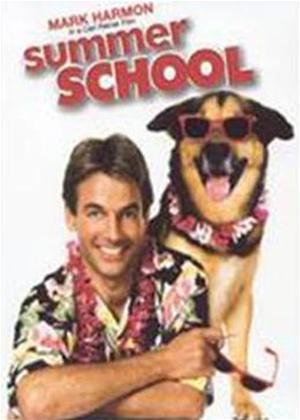 Rent Summer School Online DVD Rental