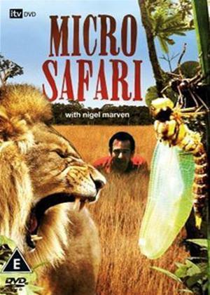 Rent Microsafari Online DVD & Blu-ray Rental