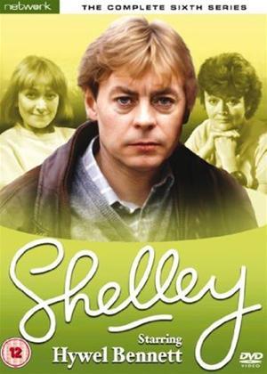 Rent Shelley: Series 6 Online DVD Rental
