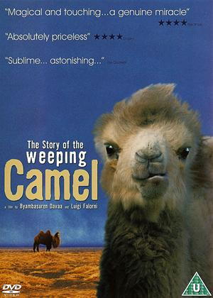 The Story of the Weeping Camel Online DVD Rental