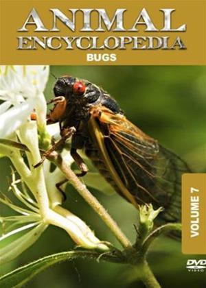 Rent Animal Encyclopedia: Vol.7: Bugs Online DVD Rental