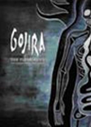 Rent Gojira: The Flesh Alive Online DVD Rental