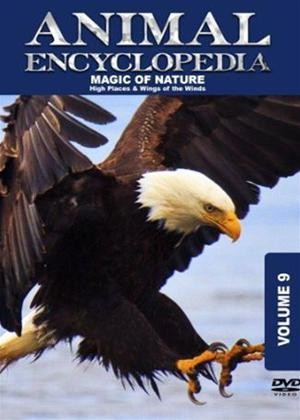 Rent Animal Encyclopedia: Vol.9: High Places and Wings of the Wind Online DVD Rental