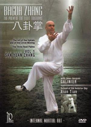 Rent Bagua Zang: Vol.1 Online DVD Rental