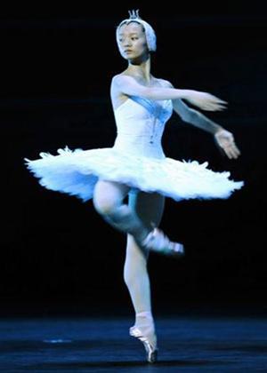 Rent Swan Lake: Royal Opera House Online DVD Rental
