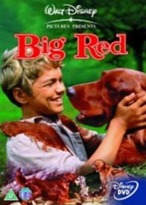 Rent Big Red Online DVD Rental