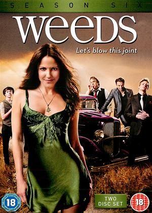 Rent Weeds: Series 6 Online DVD Rental