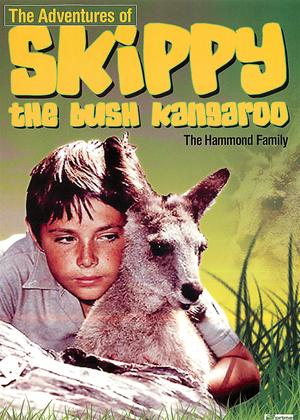 Rent Skippy: The Bush Kangaroo Online DVD & Blu-ray Rental
