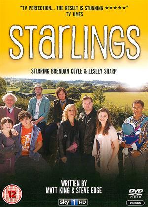 Rent Starlings Online DVD Rental