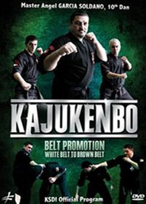 Rent Kajukenbo: White Belt to Brown Belt Online DVD Rental