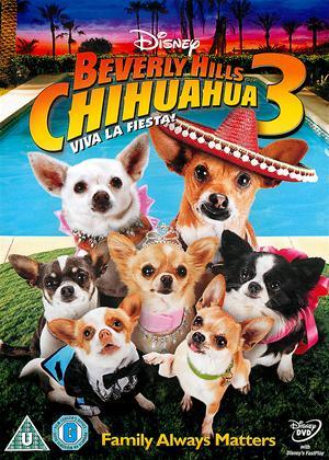 Rent Beverly Hills Chihuahua 3: Viva La Fiesta! Online DVD Rental