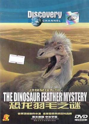 Rent The Dinosaur Feather Mystery Online DVD Rental