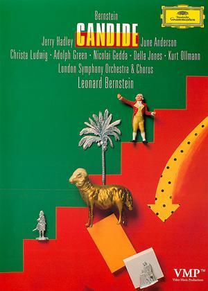 Rent Leonard Bernstein: Candide (aka Candide) Online DVD Rental