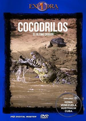 Rent Crocodiles: The Last Dragon Online DVD Rental