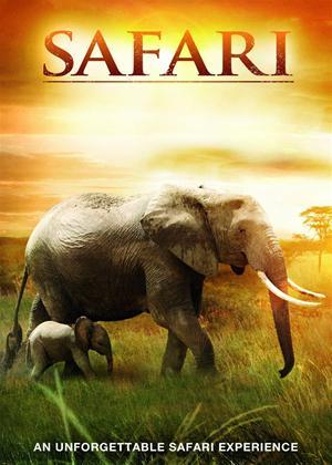 Rent Safari 3D Online DVD Rental