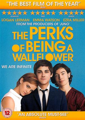 The Perks of Being a Wallflower Online DVD Rental