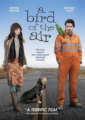 Rent A Bird of the Air Online DVD Rental
