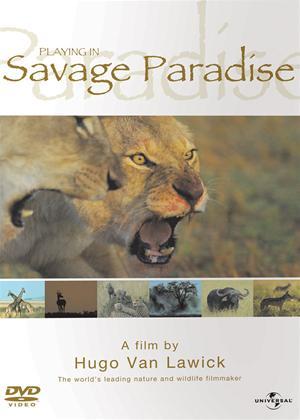 Rent Hugo Van Lawick: Playing in Savage Paradise Online DVD Rental