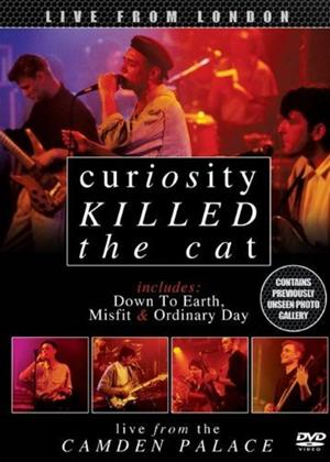 Rent Curiosity Killed the Cat: Live from London Online DVD Rental