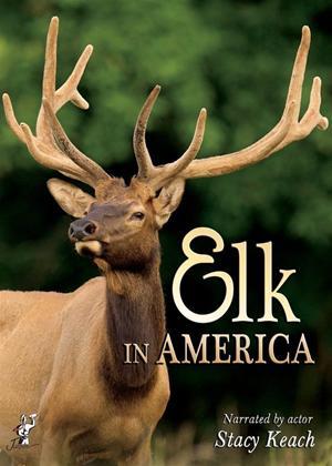 Rent Elk in America Online DVD Rental