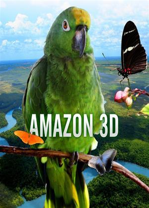 Rent Amazon Online DVD Rental
