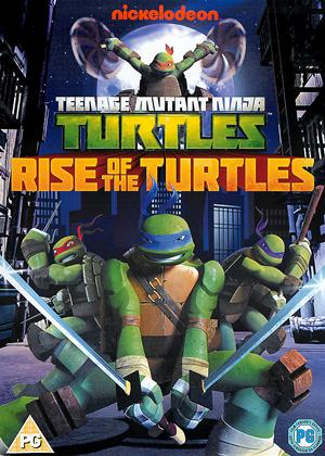 Rent Teenage Mutant Ninja Turtles: Rise of the Turtles: Series 1: Vol.1 Online DVD Rental
