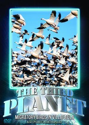 Rent The Third Planet: Migratory Birds in Villafafila Online DVD Rental