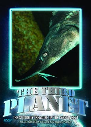Rent The Third Planet: The Sturgeon Treasure (In the Caspian Sea) Online DVD Rental