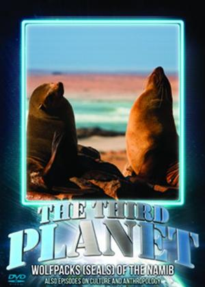 Rent The Third Planet: Wolfpacks (Seals) of the Namib Online DVD Rental