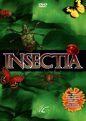 Rent Insectia Online DVD Rental