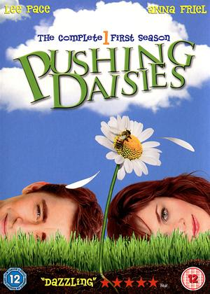 Rent Pushing Daisies: Series 1 Online DVD Rental