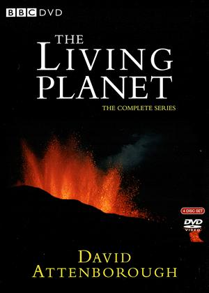 Rent The Living Planet Online DVD Rental