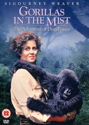 Rent Gorillas in the Mist Online DVD & Blu-ray Rental