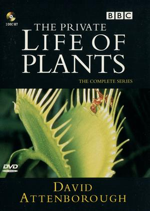 Rent The Private Life of Plants Online DVD Rental