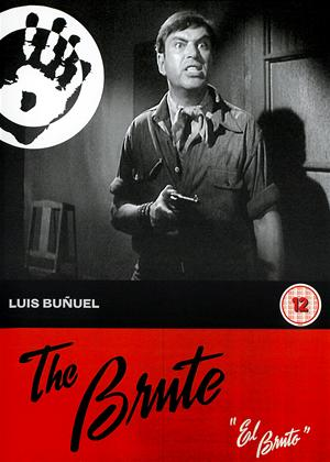 Rent The Brute (aka El Bruto) Online DVD Rental