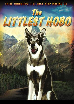 Rent The Littlest Hobo Online DVD & Blu-ray Rental