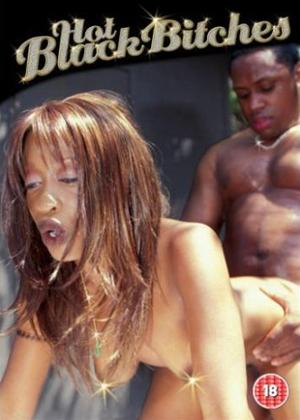 Rent Hot Black Bitches 1 Online DVD Rental