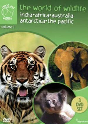 Rent The World of Wildlife: Vol.1 Online DVD Rental