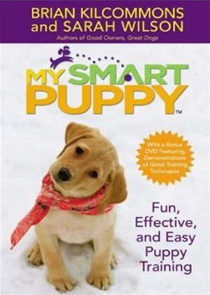 Rent Training My Puppy Online DVD Rental