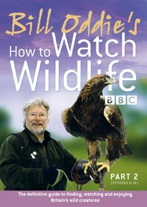 Rent Bill Oddie: How to Watch Wildlife: Part 2 Online DVD Rental