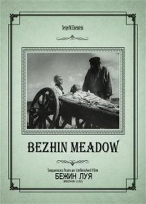 Rent Bezhin Meadow (aka Bezhin lug) Online DVD Rental