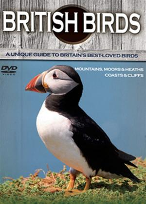 Rent British Birds and Wildlife: Mountains, Moors and Heaths Online DVD Rental