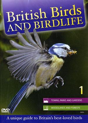 Rent British Birds and Wildlife: Towns, Parks and Gardens Online DVD Rental